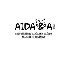AIDA&A: arrestate quel sacerdote!