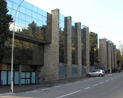 Dimissioni Bodellini, interviene il Consiglio Direttivo di BCSM