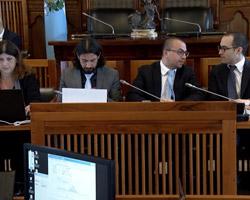 L'intervento di Celli in commissione finanze